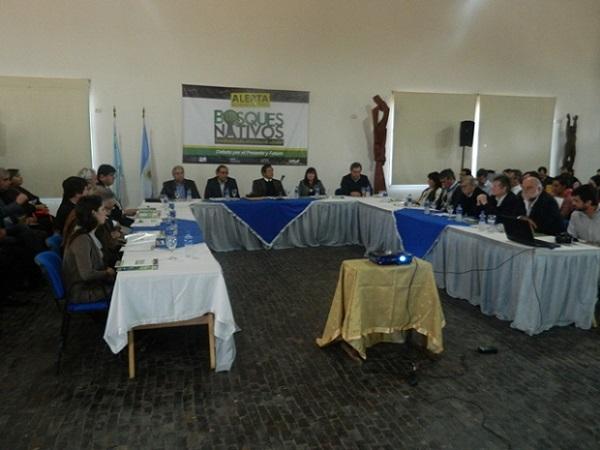 Amplio debate por bosques nativos
