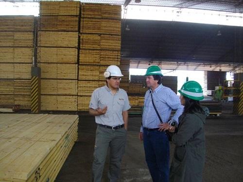 Visita a una empresa forestal misionera